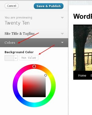 Background Color Picker in WordPress