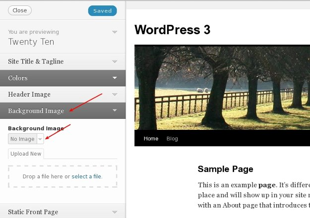 Theme Customizer for WordPress Twenty Ten Theme