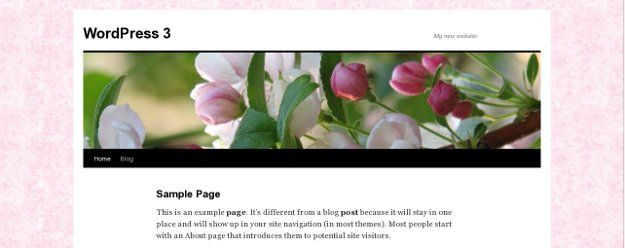 Custom Pink Background for WordPress Twenty Ten