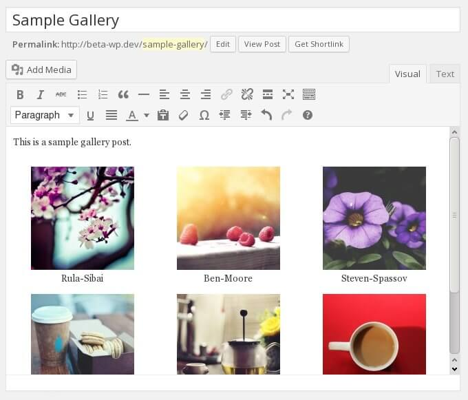 WordPress Native Gallery in the Content Editor