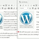 editor style WordPress visual editor