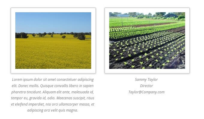 multi line caption in WordPress gallery image