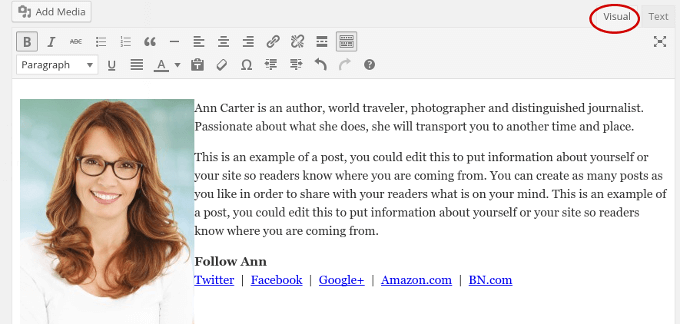 author text in wordpress editor