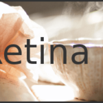 twice the size logo for retina screens