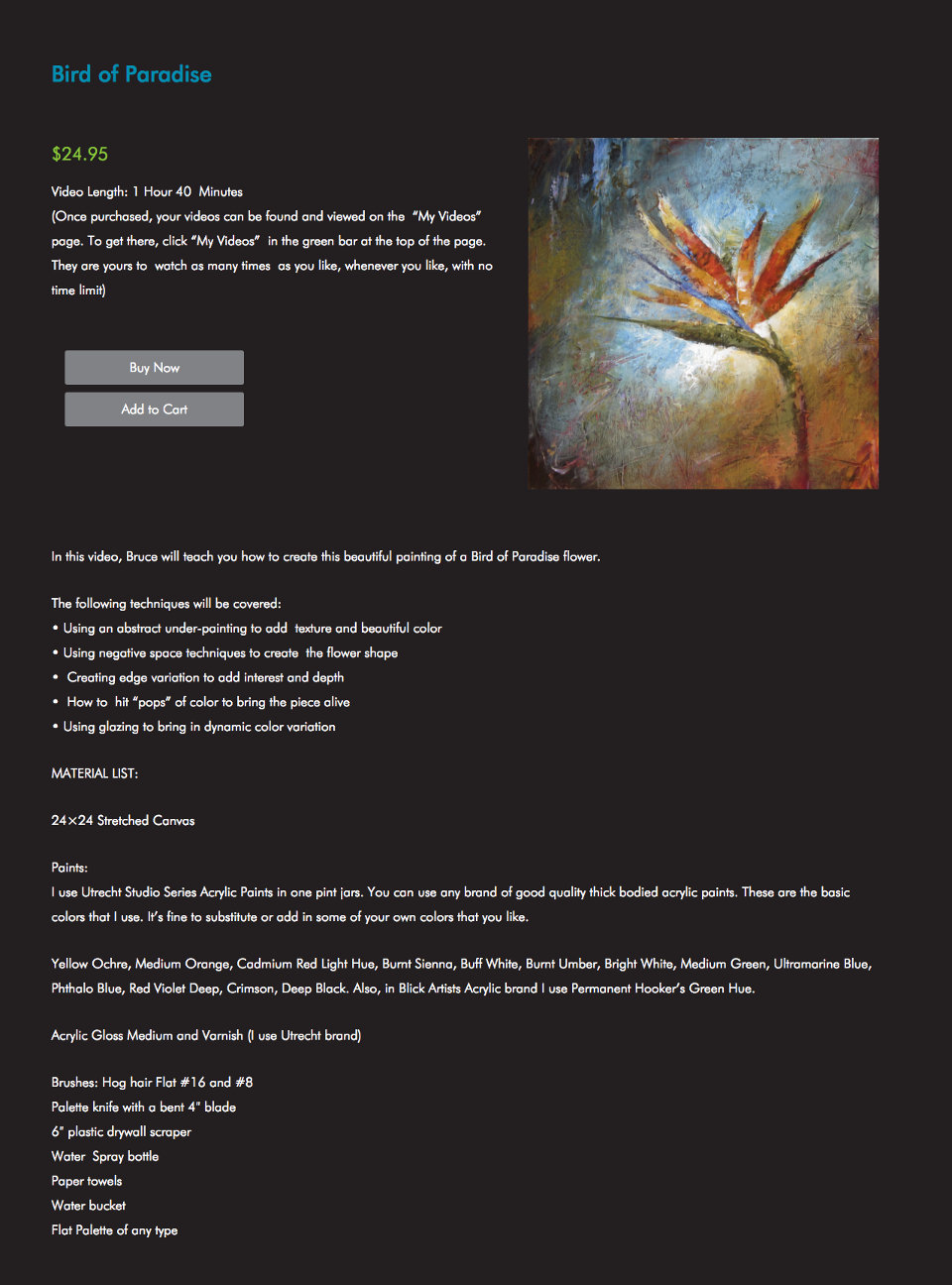 e-commerce detail page for selling painting lesson video
